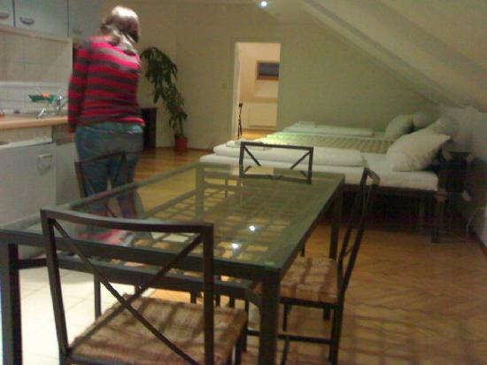 Vista opuesta de la cocina/sala de estar y el gran sofá-cama (al ...