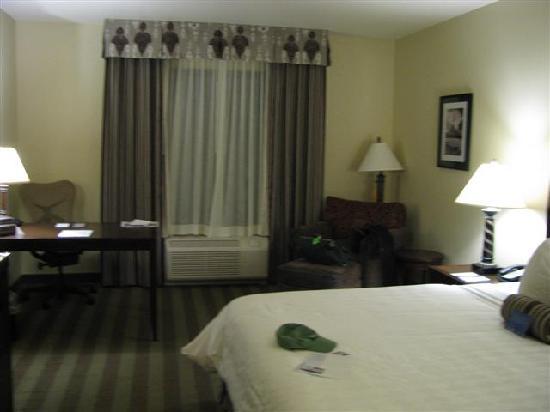 Hilton Garden Inn Kalispell: Very Modern room!
