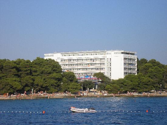 Petrcane, Croatia: dal mare