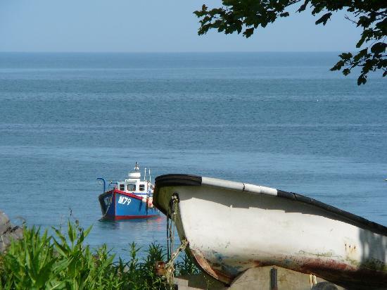East Trewent Farm: Barafundle Bay 1