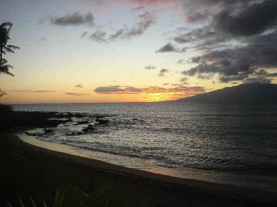 The Napili Bay: Paridise
