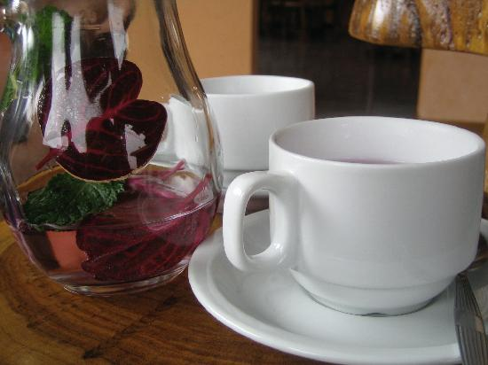 Monteverde Rustic Lodge: The aromatic tea made by the owner