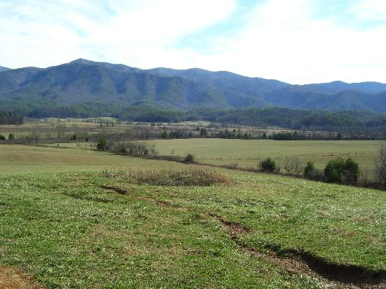 View Picture Of Balsam Mountain Road Great Smoky