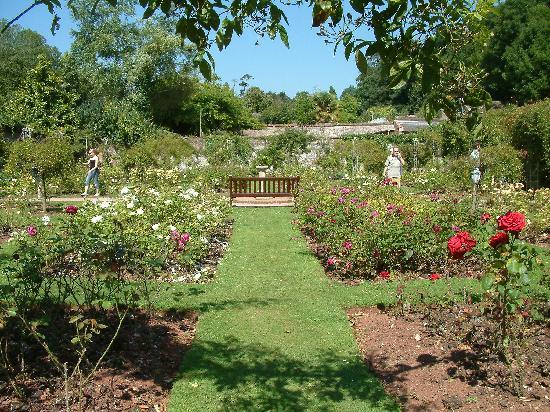 Waters Edge Hotel: Cockington garden