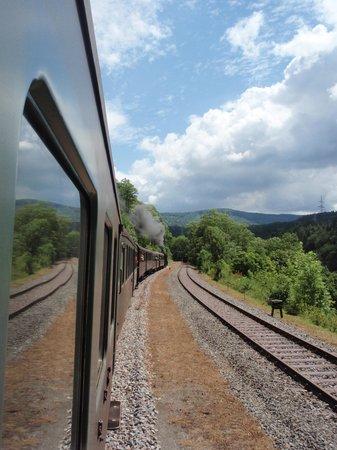 Baden-Württemberg, Tyskland: Tren de Vpor de la Selva Negra