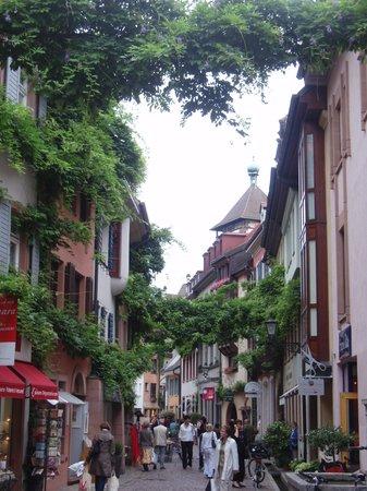 Baden-Wurttemberg, Alemania: Preciosa calle de Friburgo