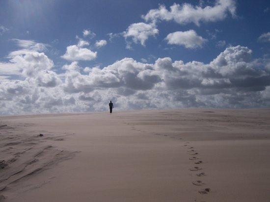 الدنمارك: Entre la dunas, Skagen