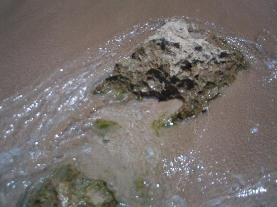 Aguadilla, Puerto Rico: Water over rock on beach