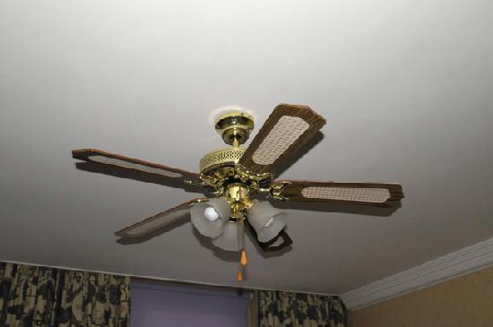 Elstead Hotel: The super room  fan