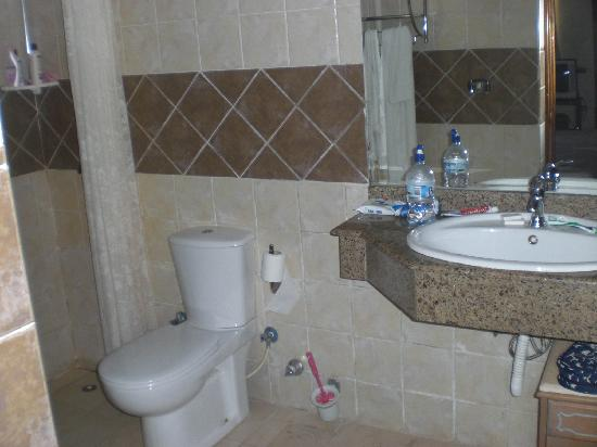 Ganet Sinai Hotel: The ensuite is clean and spacious