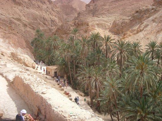 Tunisia: Oasis de Chebika
