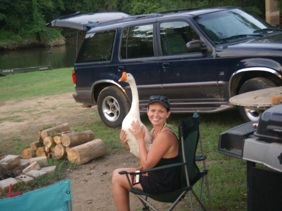Diamond John's Riverside Retreat: Mother & Goose :)
