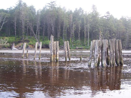 Moclips River: Remnants of the old bridge