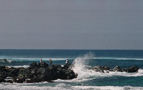 Paia, هاواي: Beach at Mama'sFish House