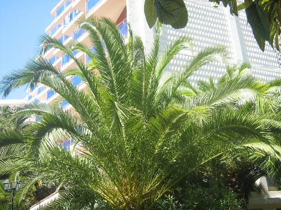 Gran Hotel Don Juan : Hotel + Garten mittlerer Teil