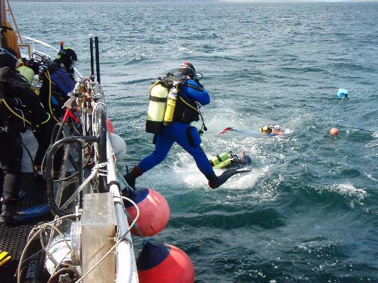 Kirkwall, UK: Divers heading for the marker buoy