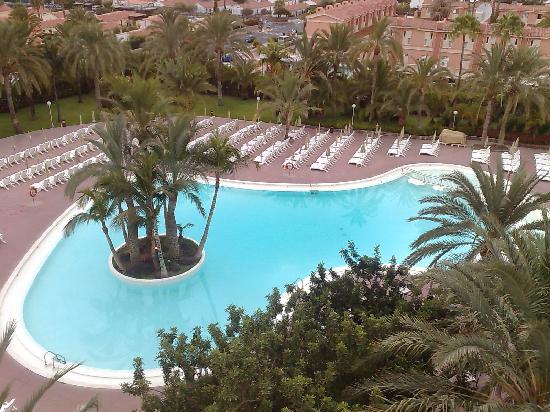 Piscina dell 39 hotel bild fr n aparthotel riu flamingo for Piscina playa del ingles