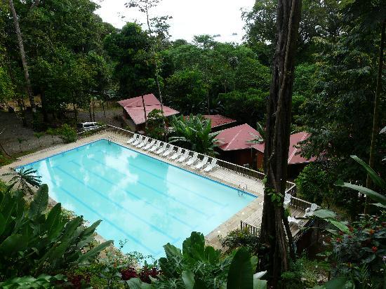 Mar y Selva Ecolodge: Pool