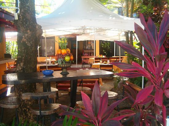 Hotel Celuisma Cabarete: inside charly's bar