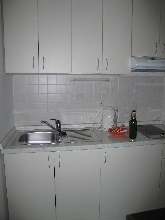 Berkeley Hotel: Kitchen (beer bottle not supplied!)