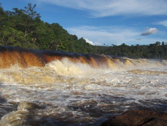 Canaima-Nationalpark, Venezuela: Salto yuri Canaima