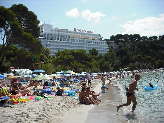 Aparthotel Paradise Club & Spa: Cala Galdana