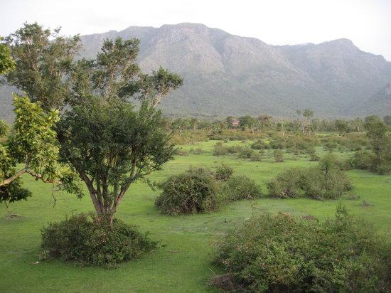 Masinagudi, Indien: hills