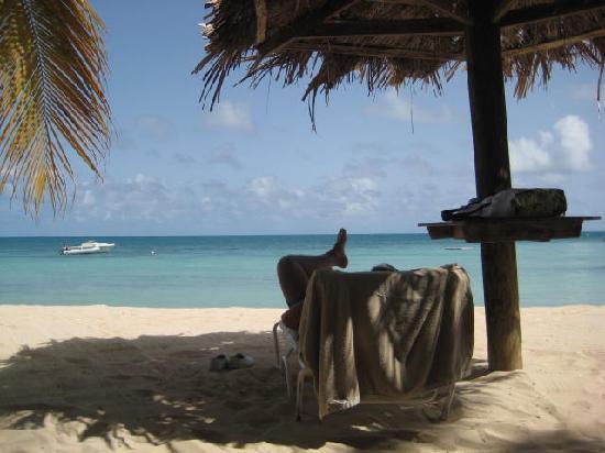 Blue Waters Antigua : the beautiful beach at bw