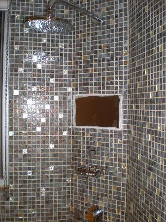 Acesite Knutsford Hotel: The shower TV