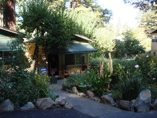 Fern Grove Cottages: our cabin