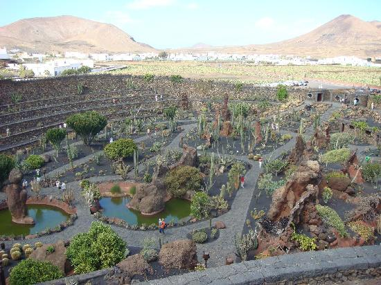 jardin de cactus obra de cesar manrique picture of lanzarote canary islands tripadvisor. Black Bedroom Furniture Sets. Home Design Ideas