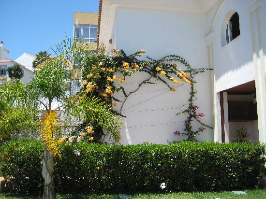 Hotel La Luna Blanca: Near the pool