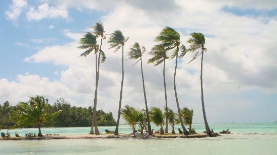 Tahaa, Polinesia Francesa: motu privato per cene romantiche (ma costosissime!!!)