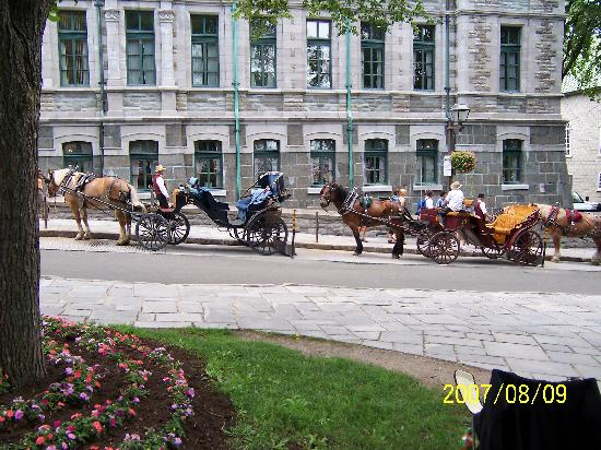 Horse drawn carriages for sightseeing in Quebec City