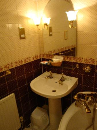 Wynnstay Hotel: Bath Bathroom 24 (looked liked it had been tacked on in the room)