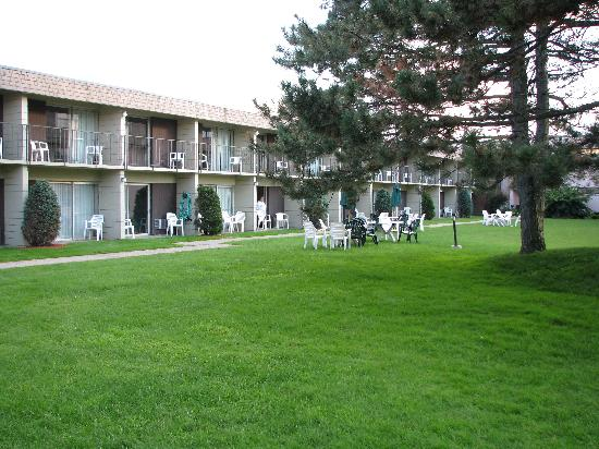 BEST WESTERN Brantford Hotel And Conference Centre: Grassy area on interior side