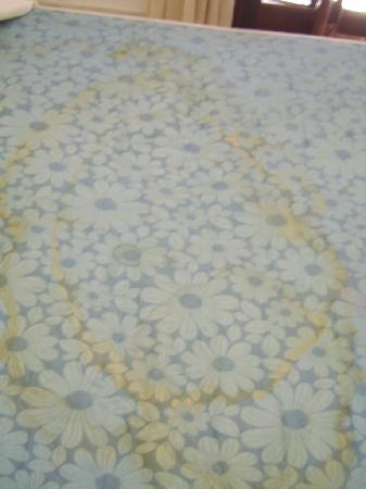 Tegueste Villas: Bed stains