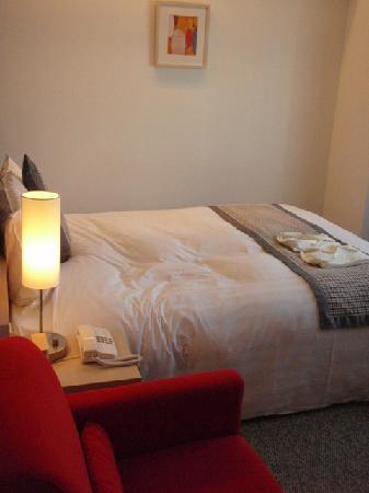 Hamilton Red : standard room, clean & spacious enough