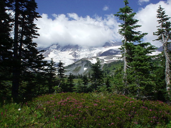 Mount Rainier Nationalpark, WA: A hike at Mt. Rainier