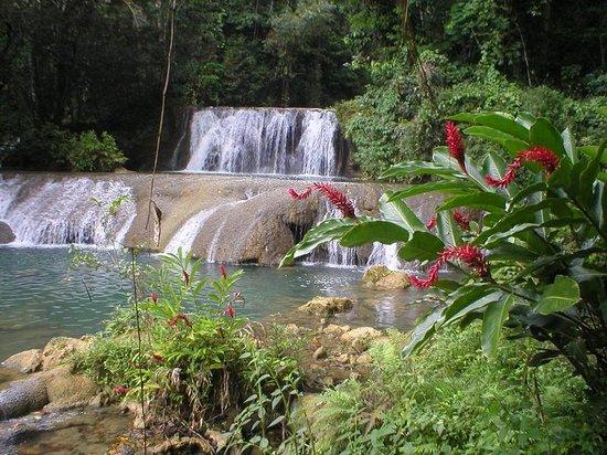 Saint Elizabeth Parish, Jamaica: falls