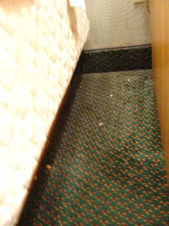 Howard Johnson Inn - Newburgh : nuts & shells on carpet