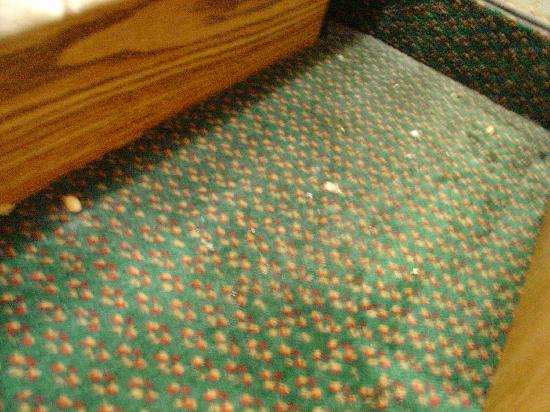 Howard Johnson Inn - Newburgh : nuts and shells on carpet