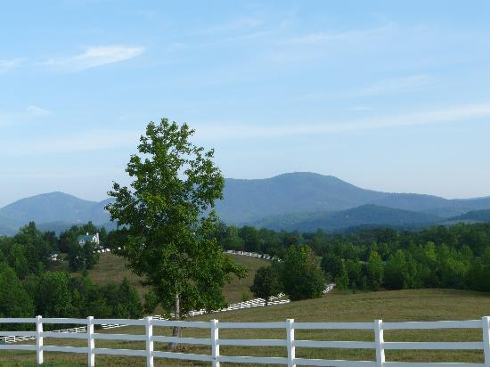 The Red Horse Inn : The View 1