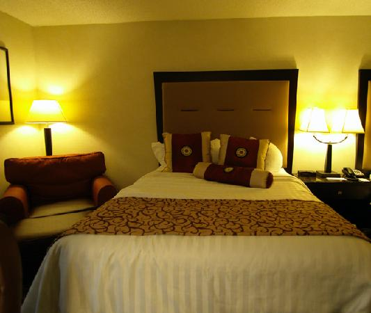 Ramada Gainesville: Bed with the chair beside it.