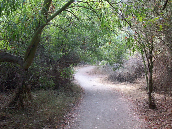 Temescal Gateway Park: Alas, more easy hiking!