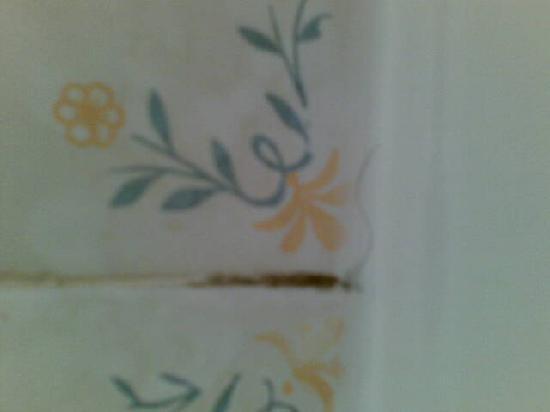 Hotel Aatu : Moho y pelo en una ducha