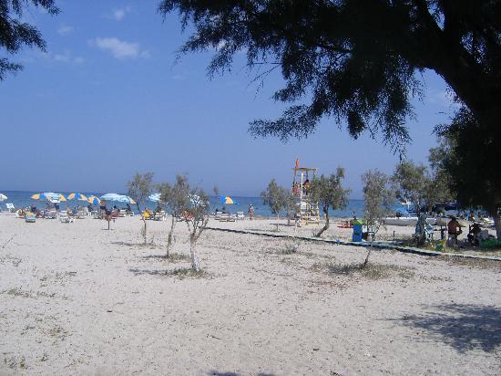 Tropical Sol: Spiaggia di Tingaki