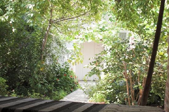 Annette's House: Blick durch den Garten