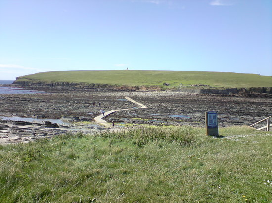 Orkney Islands, UK: Brough of Bursay