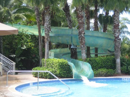 Hyatt Residence Club Bonita Springs Coconut Plantation Waterslide At Point